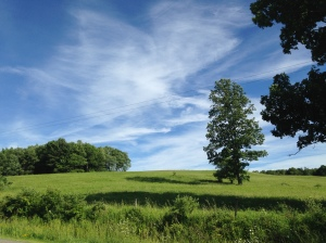 A picture perfect summer day in Chenango County.