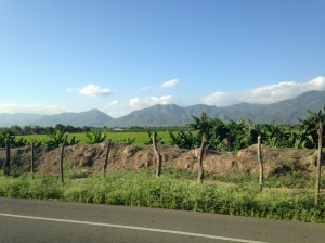 The ride to Monte Cristi and back again took us through the Dominican Republic's central Cibao valley.
